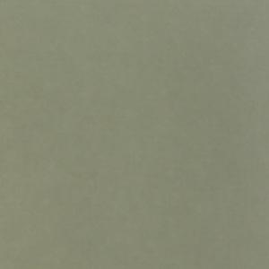 Peterboro Matboards - Lichen